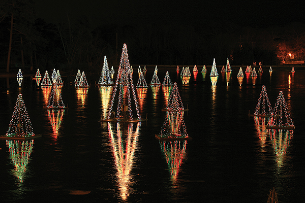 public light displays