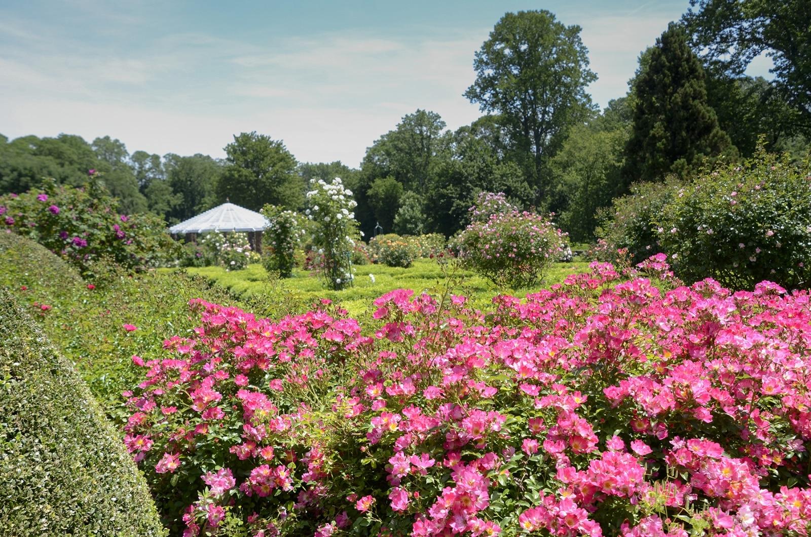 Gardens in NJ