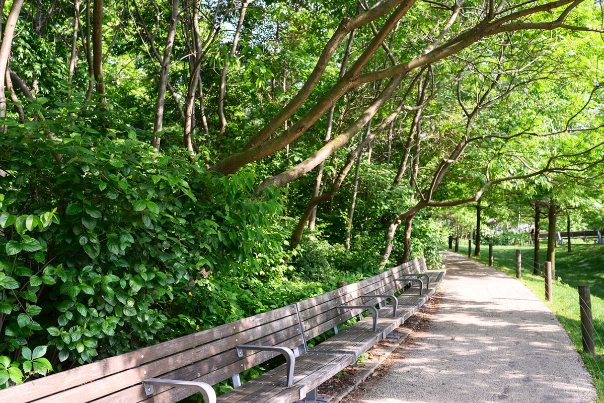new jersey parks reopen