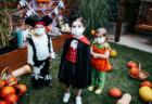 10 Ways to Safely Celebrate Halloween In 2020